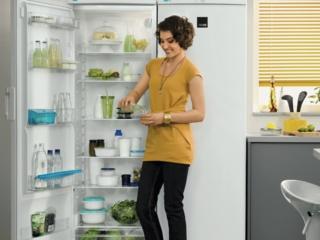 Режимы и функции современных холодильников на примере ZanussiРежимы и функции современных холодильников на примере Zanussi